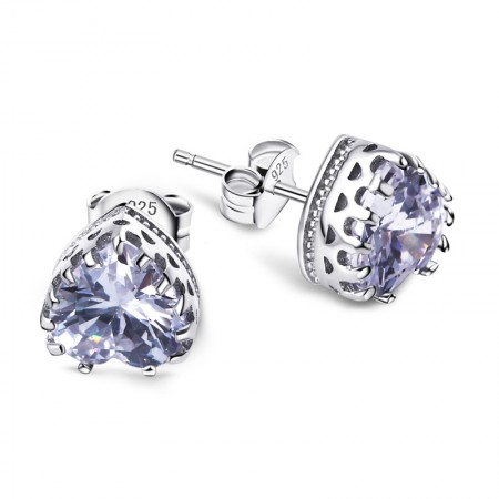 Fashion Wild 925 Silver Exquisite Hypoallergenic Heart-Shaped Earrings